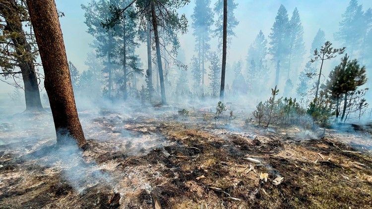 'We're facing a long, difficult fire season': Gov. Brown, state leaders urge Oregonians to be prepared