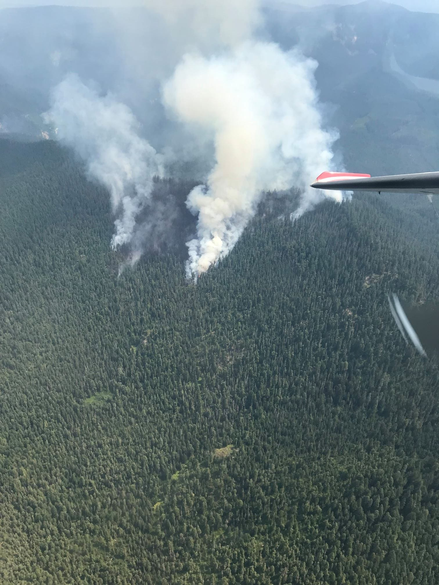 Oregon wildfires: Five new fires in Bull of the Woods near Detroit, largest blaze grows to 300 acres