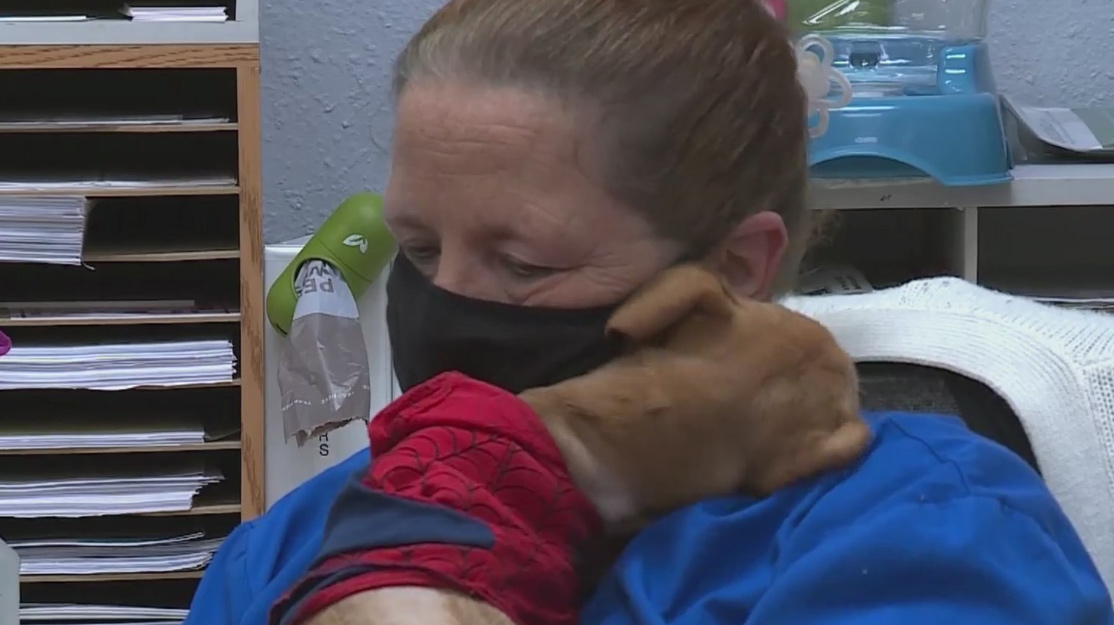 Local shelter raises money for pets through new crowdfunding site