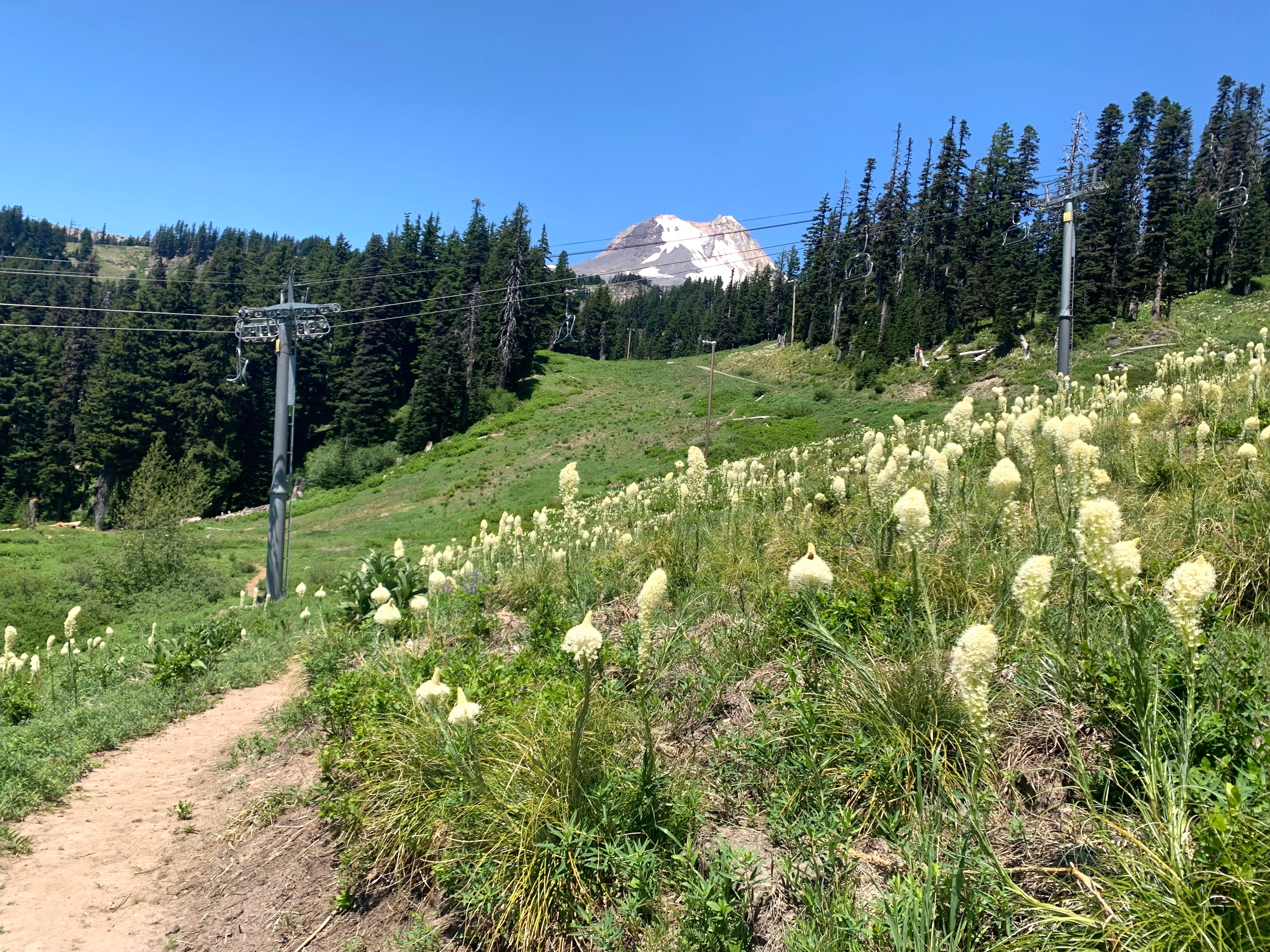 Explore Oregon Podcast: Chairlift hiking on Mount Hood, and quiet places to camp and hike