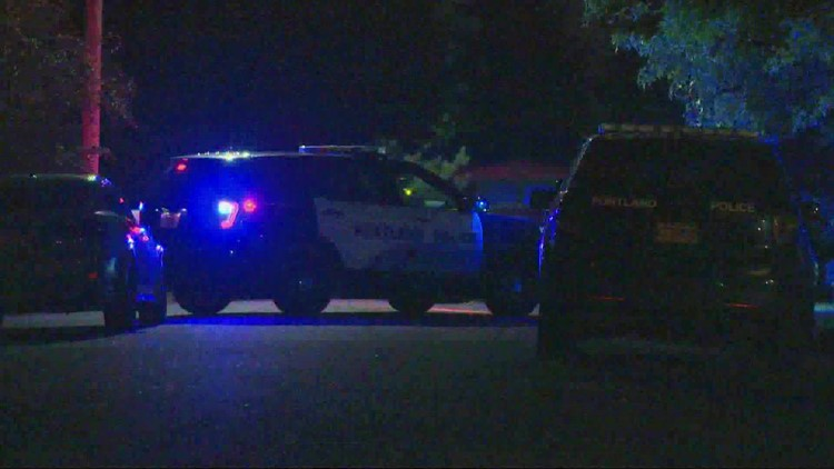 Two teens and 11-year-old boy arrested in violent 12-hour crime spree across Portland